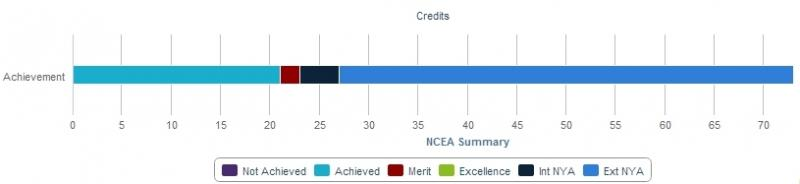 We're sorry, we meant for you to see a graph example for current student standards summary